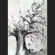 Lebensbaum.jpg